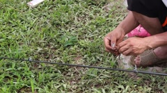Prey fish hooks, the man sitting by the river fishing Stock Footage