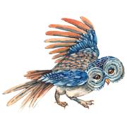 Stock Illustration of Watercolor owl isolated on white background