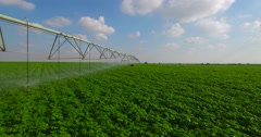 Agriculture - Irrigation,  sprinklers Stock Footage
