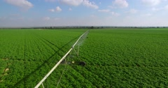 Irrigation,green field- aerial  shot - stock footage