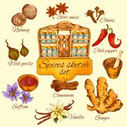 Stock Illustration of Spices Sketch Colored
