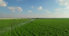 sprinklers Irrigation - aerial shot - stock footage