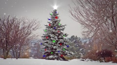 Wild Growing Christmas Tree With Ornaments During a Snowstorm Stock Footage