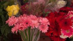 Gerberas and other flowers in market stall Stock Footage