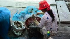 Thai people working pull and select shellfish from fishnet - stock footage