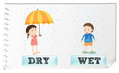 Opposite adjectives dry and wet - stock illustration