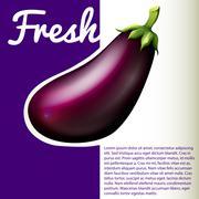 Infographic with fresh eggplant - stock illustration
