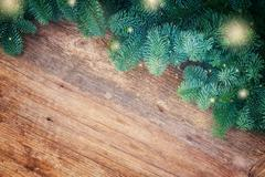 christmas fresh evergreen tree branches - stock photo