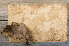 Still-life Dry oak sheet on an old writing-book - stock photo