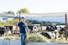 Farmer is working on farm with dairy cows - stock photo