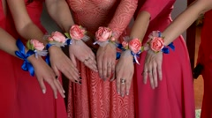 Girl show hands in pink dress close-up of a group of flowers - stock footage