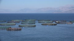 4K Fish Farm on the Sea, Hatchery Fishing, Greece Aquaculture, Feeding Stock Footage
