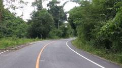 Stumptail Monkeys On A Road Stock Footage