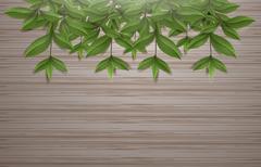 Leafs on wood background vector design Stock Illustration
