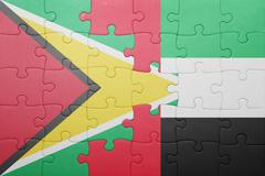puzzle with the national flag of united arab emirates and guyana - stock photo