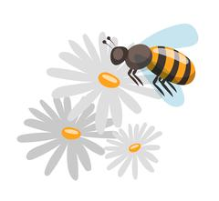 Bee cartoon style vector illustrations - stock illustration
