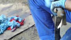 Auto mechanic clean with a cloth a piece of the car 13 - stock footage