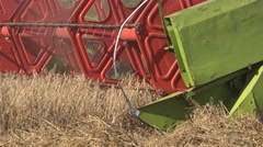 Farm combine harvesting trashing wheat grain field in summer. Panorama. 4K Stock Footage