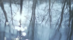 Spectacular reflection of trees and sunshine in the River Stock Footage