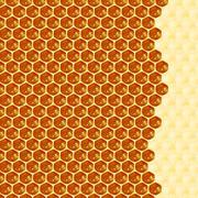 Macro of working bee on honeycells. Stock Illustration