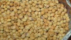 Whole Coriander Seeds Stock Footage