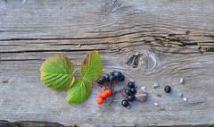 Leaves and Berries on Old Board - stock photo