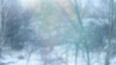 Snowfall in the forest park background  Stock Footage