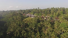 Rice Terraces Bali Aerial 4k Stock Footage