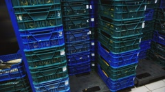 Many boxes of food in the freezer Stock Footage