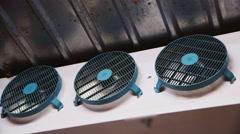 Three industrial fan in the freezer Stock Footage