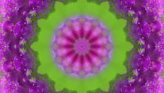 Artistic circle mosaic pattern with abstract flower in green and violet colors Stock Footage
