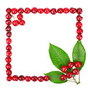 frame made of cherries and green leaves - stock photo