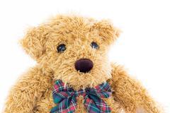 Close up teddy bear portrait on white - stock photo