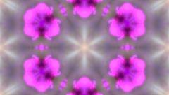 Spring mosaic pattern with bright pink flowers Stock Footage