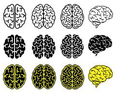 Set of human brains. Vector illustration. Stock Illustration