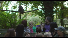 4K Families visiting a falconry centre watch as a grey owl takes flight - stock footage
