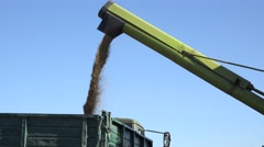 Grain loads to trailer Stock Footage