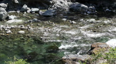Small River With Rocky Shore And Bed Stock Footage