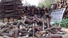 Stock piles of firewoods zoom in Stock Footage