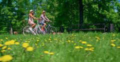 Romantic Bicycle Ride Stock Footage