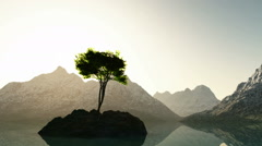 Mountain lake in Alps with tree at rocky island Stock Footage