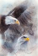 Symbol of American Freedom, wild bald eagle on abstract background - stock illustration
