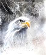 beautiful painting of  eagle on an abstract background fractal efect Symbols of - stock illustration