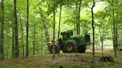 Forestry equipment logging trees. - stock footage