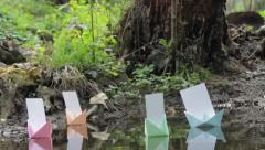 Colored paper boats float on the water of ponds in the dark forest 138 Stock Footage