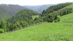 Zoom on some steep mountains covered by forests 104 Stock Footage