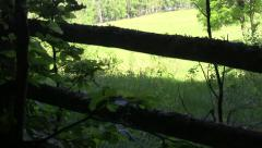 Frightened eyes that look a vast meadow behind a wooden fence from edge - stock footage