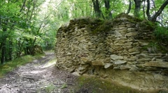 Fortress walls discovered in a dense forest 00 Stock Footage