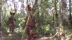 Papuan men in the forests of Papua New Guinea Stock Footage