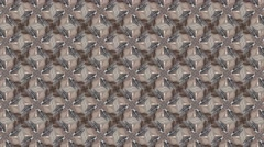 Brown kaleidoscope abstract white and black shade animation  - stock footage